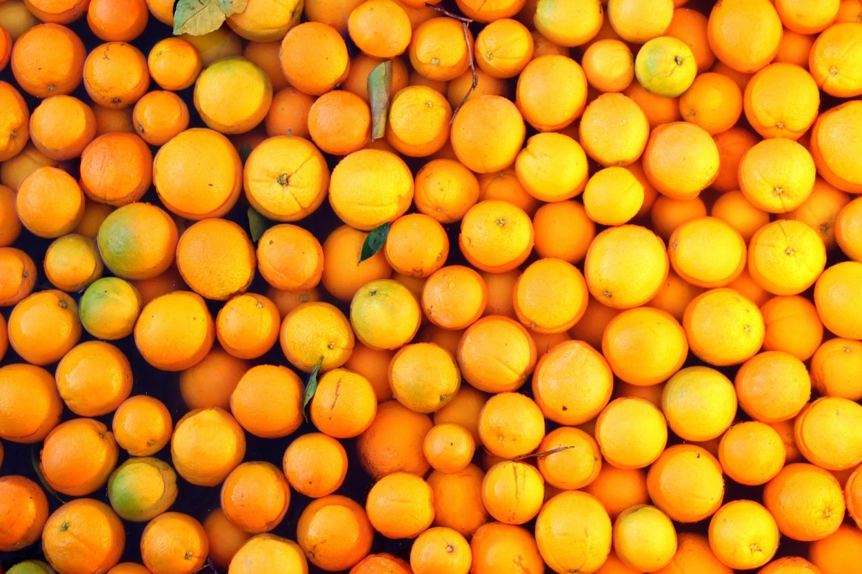 New 16% import tariffs on oranges show why we must leave the Customs Union