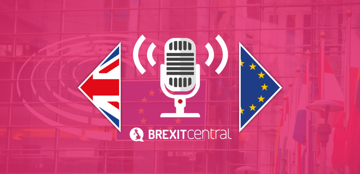 BrexitCentral Podcast: From the heart of Brussels – What do senior MEPs make of Brexit?