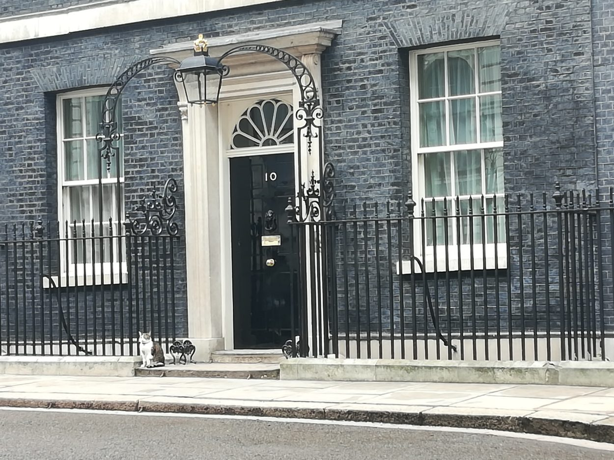 The five-week general election campaign period officially begins: Brexit News for Wednesday 6 November