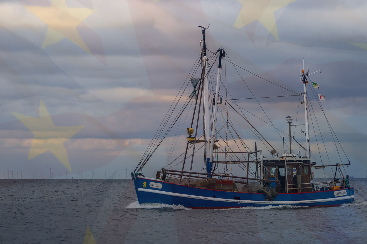 EU demands fishing rights in British waters as price for all-UK Brexit backstop: Brexit News for Friday 9th November