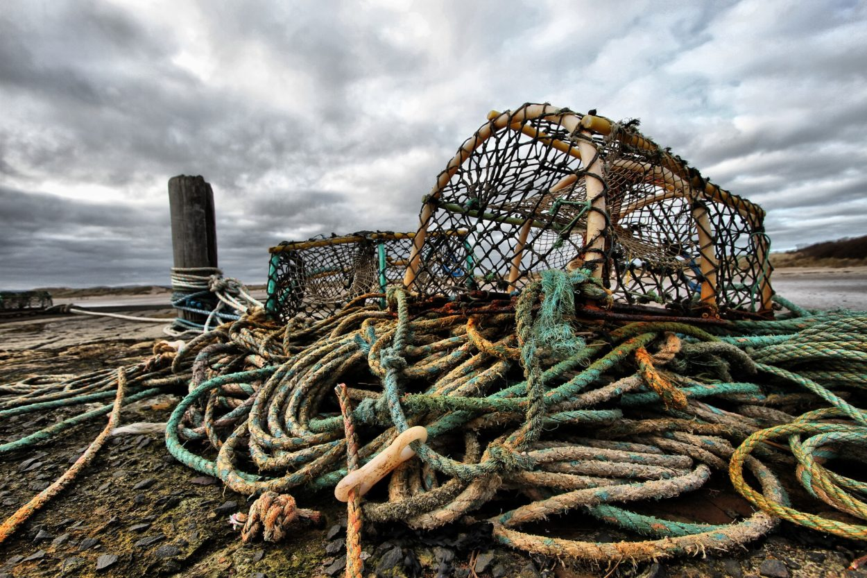 The Scallop and Crab Wars show why the UK must leave the Common Fisheries Policy