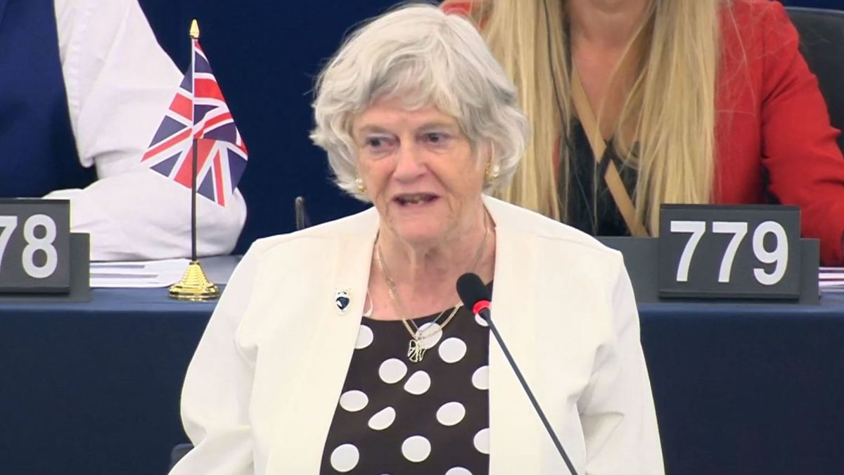 Watching Ann Widdecombe's debut in Strasbourg from the naughty seats was a sight to behold